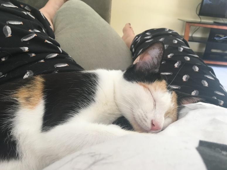 Mabel <3